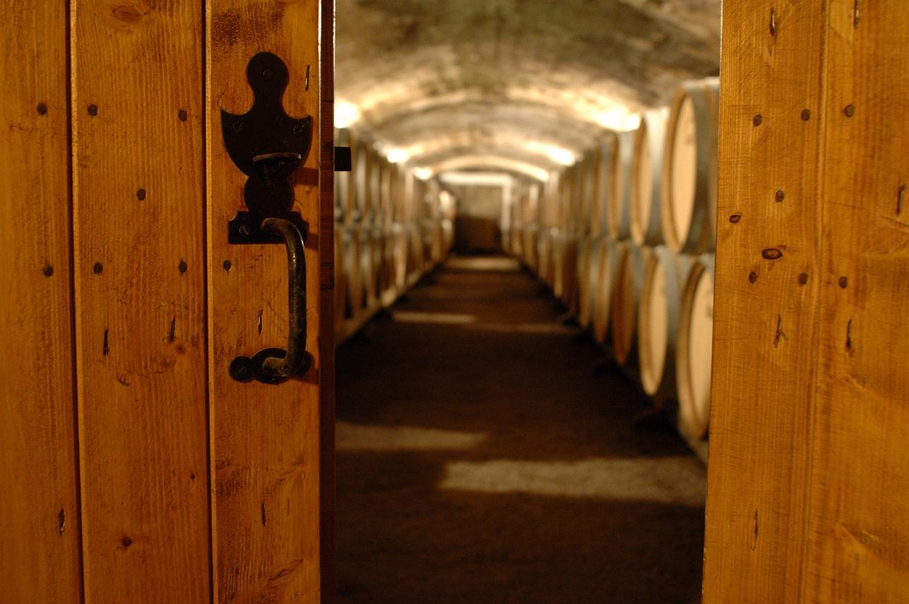 Tout savoir sur les caves à vins en deux clics : caveavin.pro