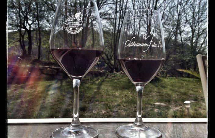 Vin Châteauneuf du Pape, un site à voir absolument